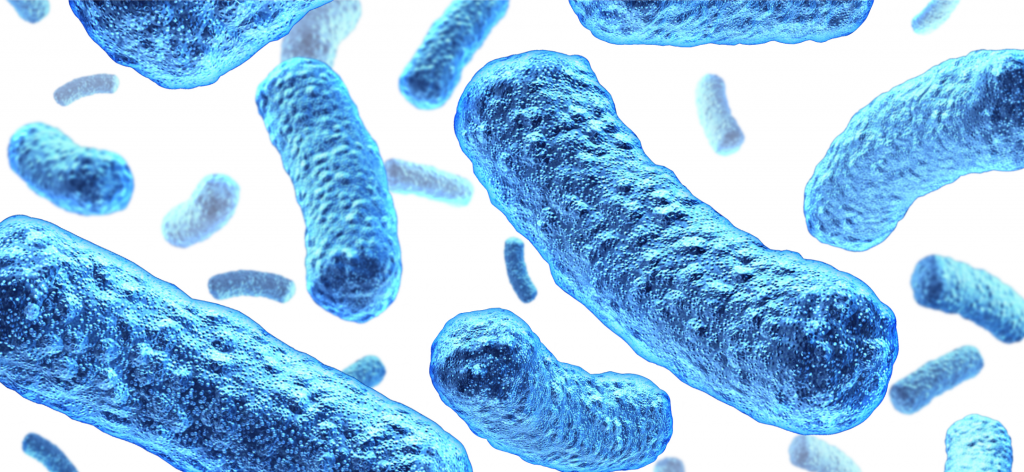 superbakterie - jak sobie z nimi radzić
