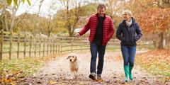 para na jesiennym spacerze z psem